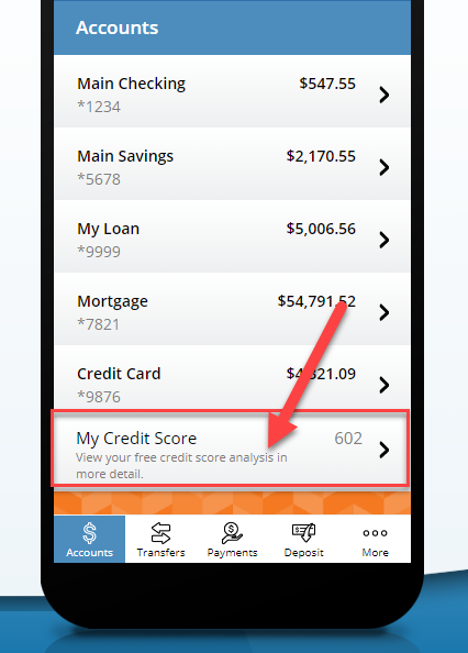 screenshot of where to find your credit score in Mobile Money