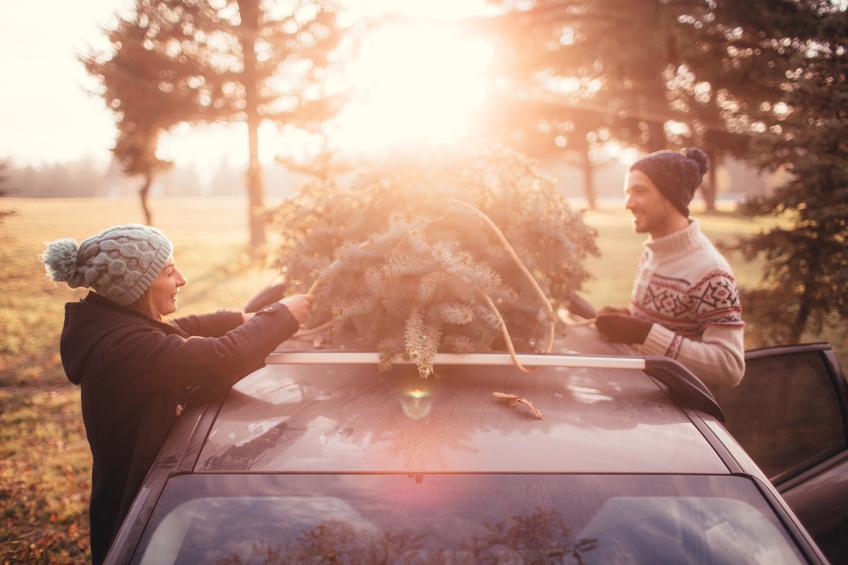 6dbglqziq6ycyadrjby2+couple_tying_tree_to_car