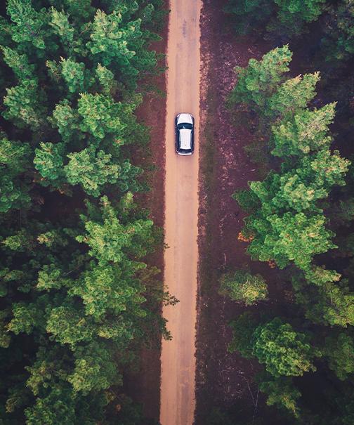 Auto loans summer homepage tile