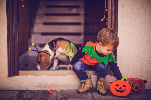 Mhzwntllrdakep8f4eii+kid_puppy_halloween_smaller_size