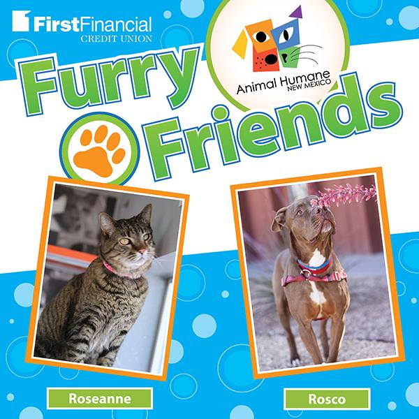 Furryfriends 052218 square