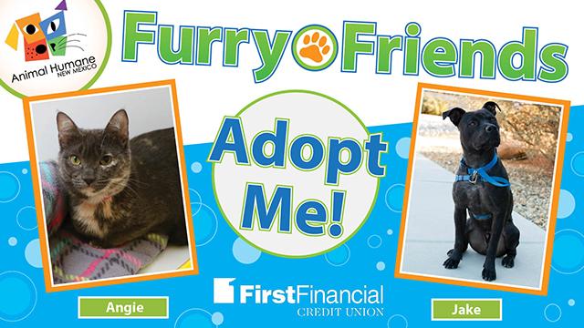 Furryfriends 031318 web
