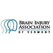 Iqdi87kjtoysltm6bmbx+brain_injury_association_of_vermont_excerpt