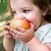 Kpjudmzqawb3qhdssu1g+kid_food_small